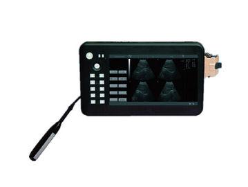 Palm siêu âm
